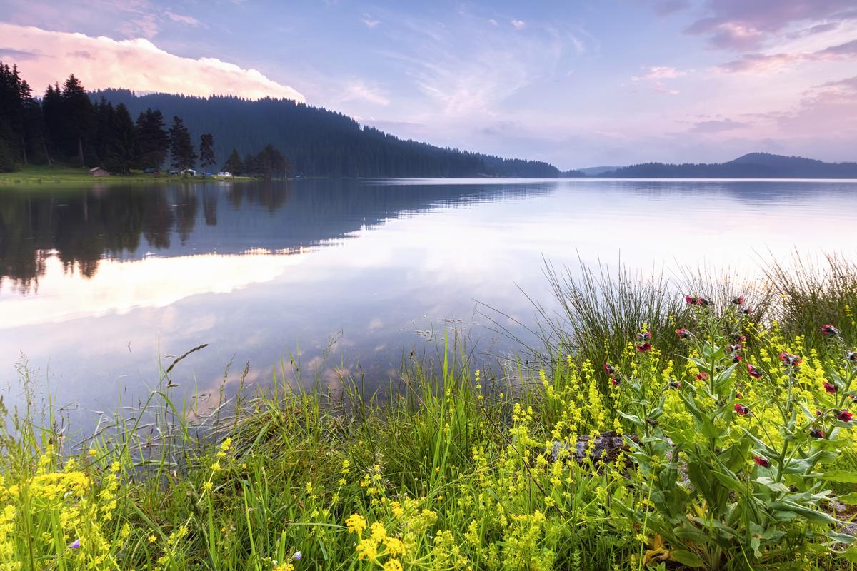 Shiroka Polyana Dam